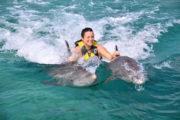 Roatan Wonderland Tours Dolphin Action Swim 2