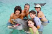 Roatan Wonderland Tours Dolphin Encounter 2
